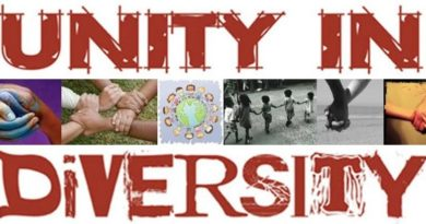 unity-in-diversity-nigeria-peace-progress-fridayposts