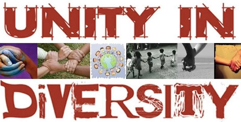 essay on cultural diversities in india