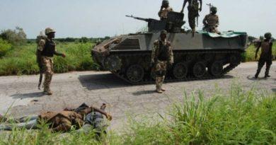 Boko Haram sacks two communities in Borno