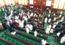 Primaries' Crises: House of Reps Probe Alleged Abuses by Political Parties, INEC